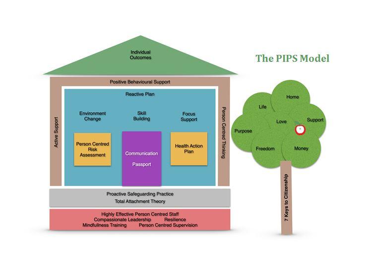 PIPS Model V7.5